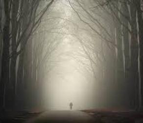Angst voor mensen maakt eenzame mensen